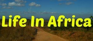 AVL Life In Africa